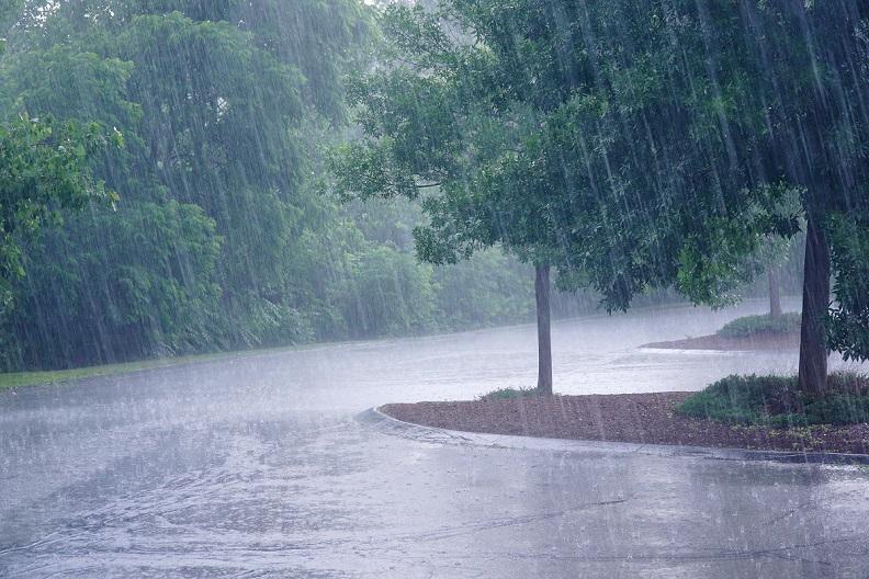 Regenschauer wasserfester Sonnenschirm